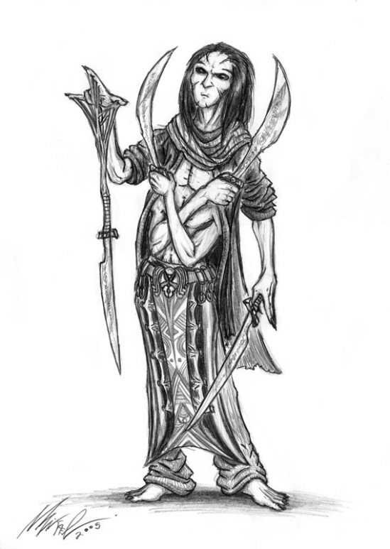 Drow-Warrior